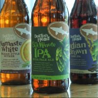 Dogfish Head new packaging lineup BeerPulse