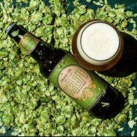Schlafly Beer Double IPA pic BeerPulse II