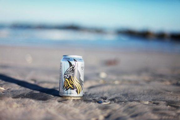 Einstok Arctic Berry Ale can BeerPulse